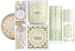 Voluspa Maison Blanc Candles